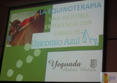 Charla Equinoterapia en  plaza Las Ventas (1) [normal web]