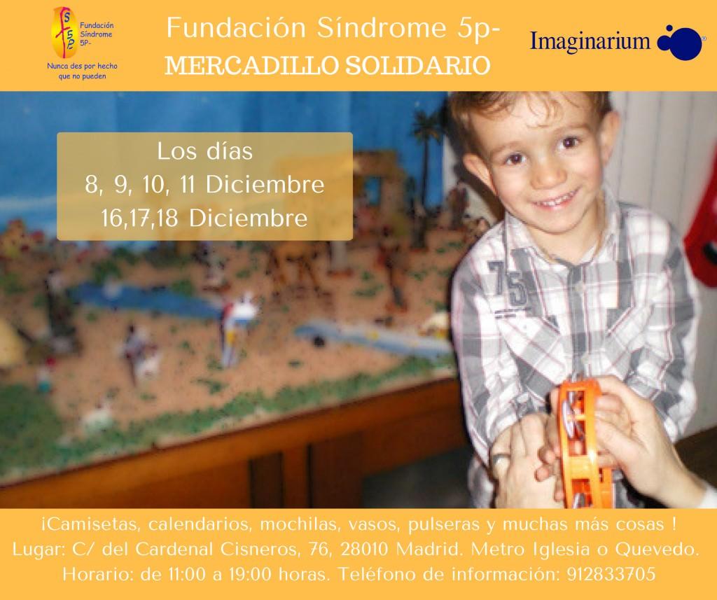 Mercadillo Solidario Fundacion Sindrome 5p-