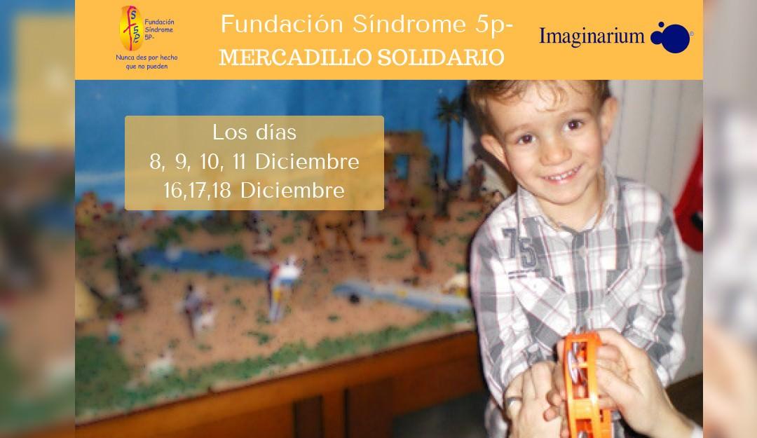 Mercadillo Solidario, Fundación Síndrome 5P-