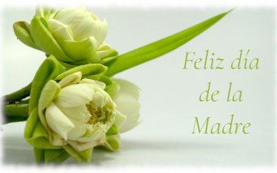 Felicidades a todas las mamás